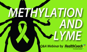 Methylation-and-Lyme